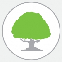 Alder Brook News Category Icon